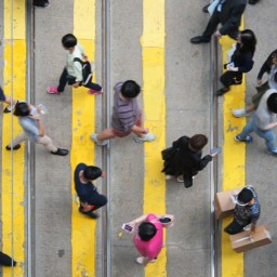 How Hong Kong moves 7 million people around
